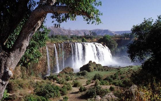 800px-Blue_Nile_Falls_Ethiopia-560x351