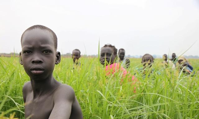 Gambela-Land-Grab