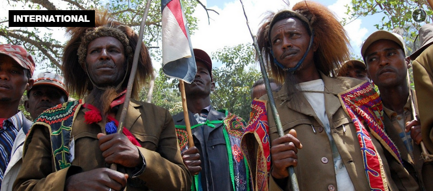 Ethiopia  ruthlessly targeted  Oromo ethnic group  report finds   Al Jazeera America
