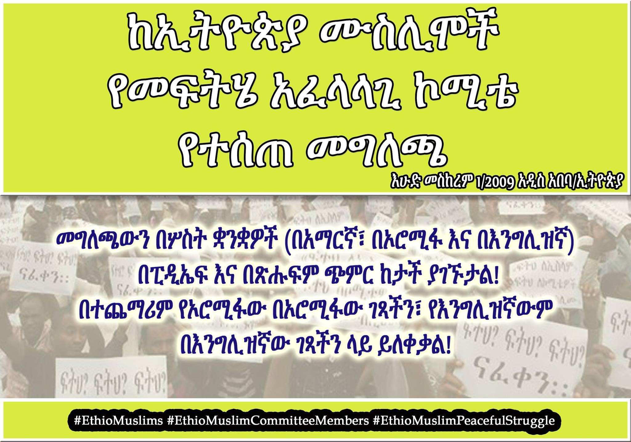 dimtsachin-yisema-press-release