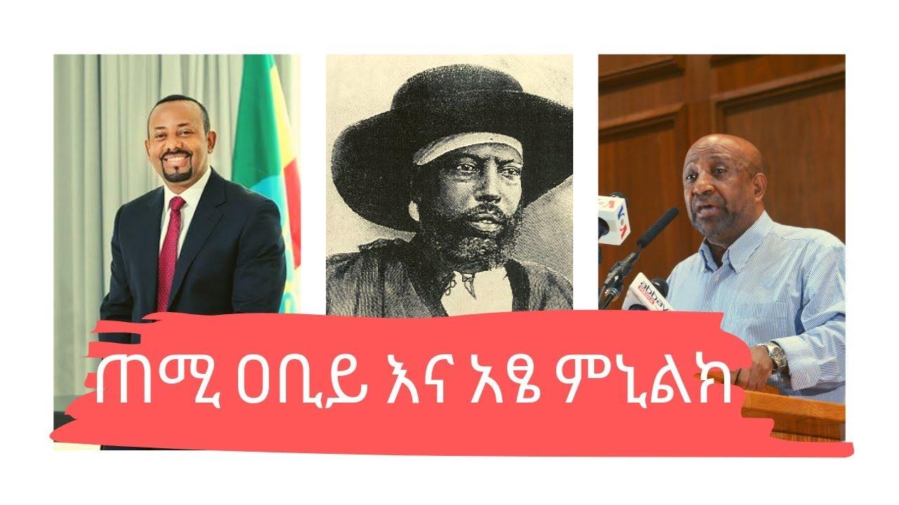 Ethiopia: ጠሚ ዐቢይ አህመድ ስለ አፄ ምኒልክ ምን አሉ? ፕሮፌሰር ብርሃኑ ነጋ ይናገራሉ
